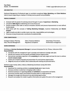 nsw government job application examples