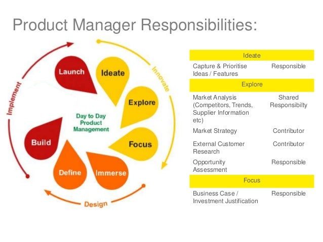 it application manager roles and responsibilities